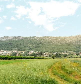 Concetto rurale con piccolo villaggio