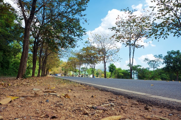 Rural country road amidst green trees with fluffy clouds and blue sky for travelling and transportation concept