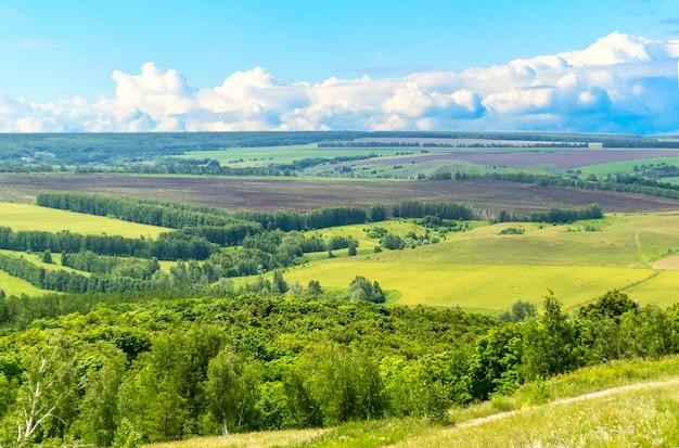 농촌 시골 도로 물마루 잔디 필드와 위의 흐린 하늘