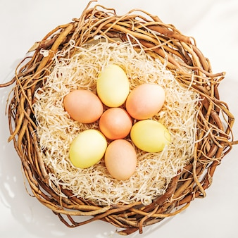 Rural easter composition with colorful eggs in the nest