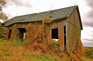 Rural farmsteads