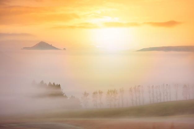朝の霧に覆われた田園地帯
