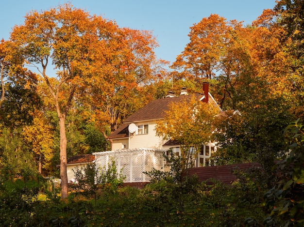 秋の田舎の後背地コテージの上の大きな木