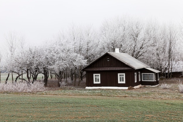 Rural house in winter, covered with snow is located on a farm
