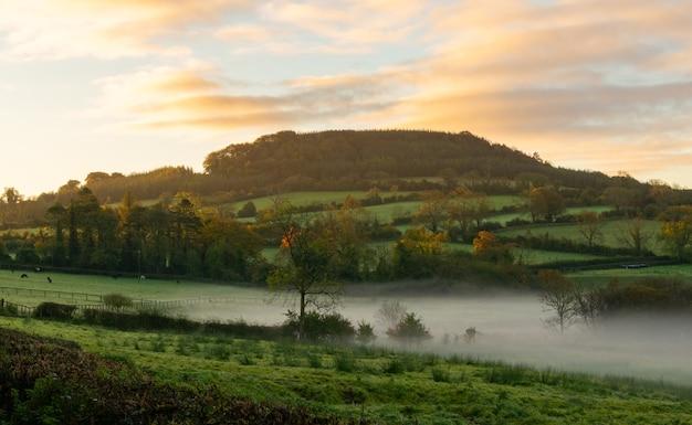 Сельская ирландия. туманный восход солнца над сельскохозяйственными угодьями в центральной части ирландии.