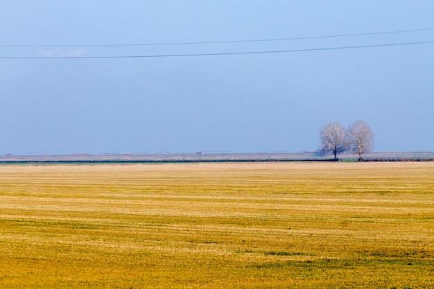 ポー川ラグーンからのイタリアの田舎の風景。