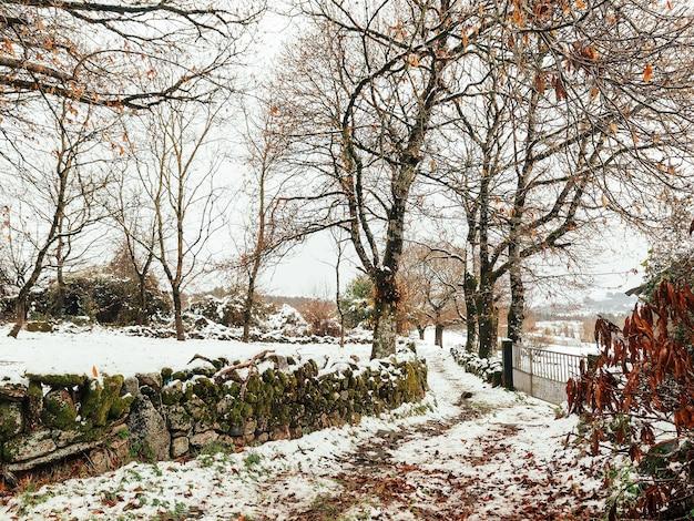 秋の降雪後の田園風景。