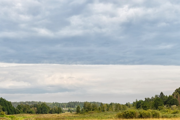 Rural landscape on a cloudy gray sky background