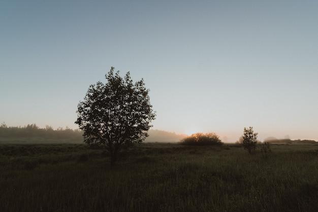 田園風景、野原、暗い嵐の雲。厳しい風景