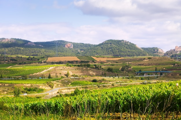 Rural landscape in   la rioja