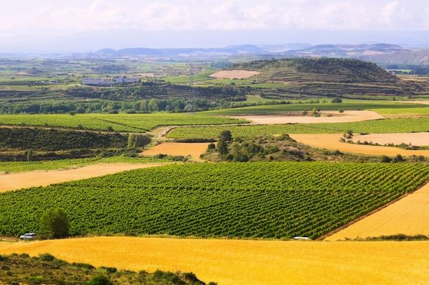Paesaggio rurale vicino a haro