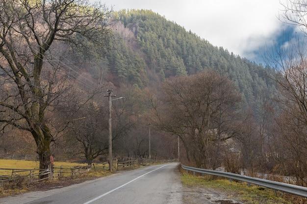 Сельский пейзаж румыния, утро пасмурная погода в горах