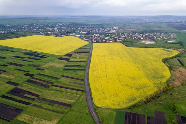 Rural landscape on spring or summer day. aerial view of green, plowed and blooming fields, house roofs and a road on sunny dawn. drone photography.