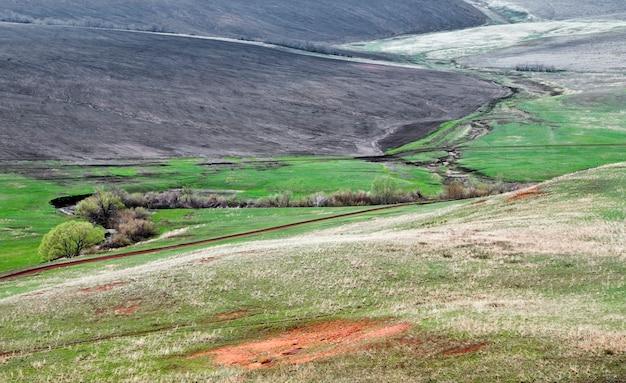 Rural landscape. spring