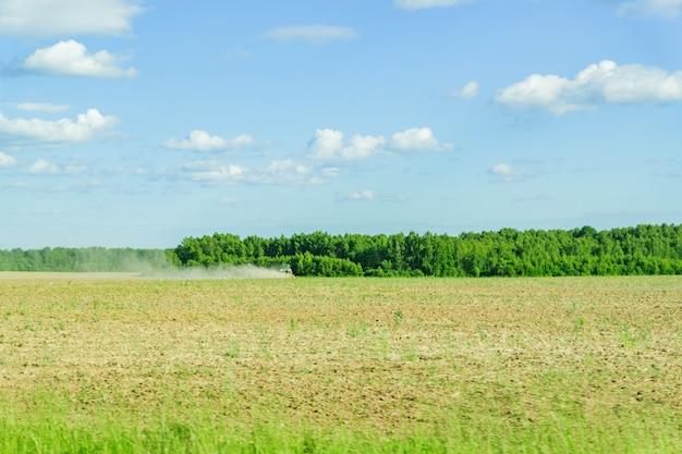 Rural landscape in summerday