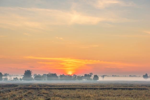 日の出の朝の霧と美しい空の田園風景。