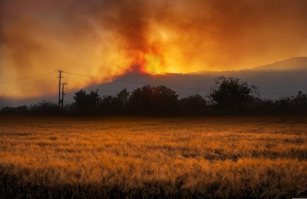 밤에는 극적인 산불이 있고 전경에는 밀밭이 있는 시골 풍경