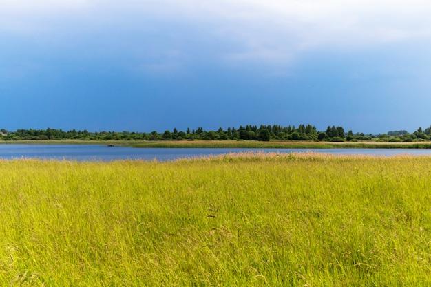 Сельский пейзаж с озером и группой деревьев на другой стороне