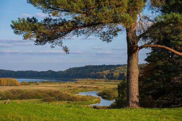 Сельский пейзаж с видом на реку и поля. пушкинские горы с савкиной горкой. россия псковская область ранней осенью