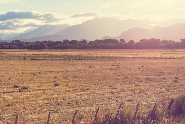 アルゼンチンの田園風景