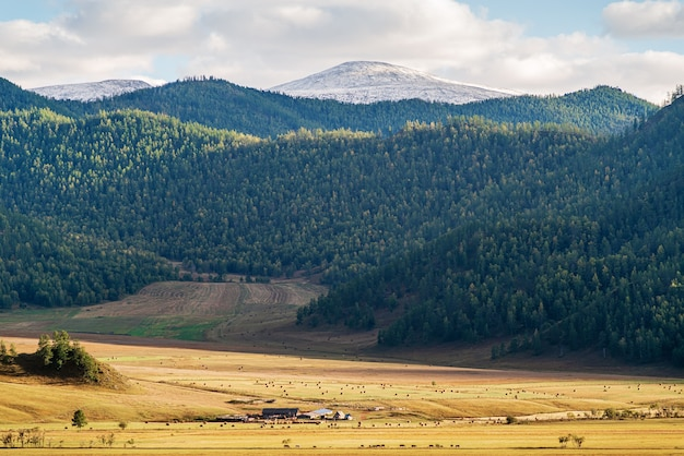Rural mountain landscape in the fall