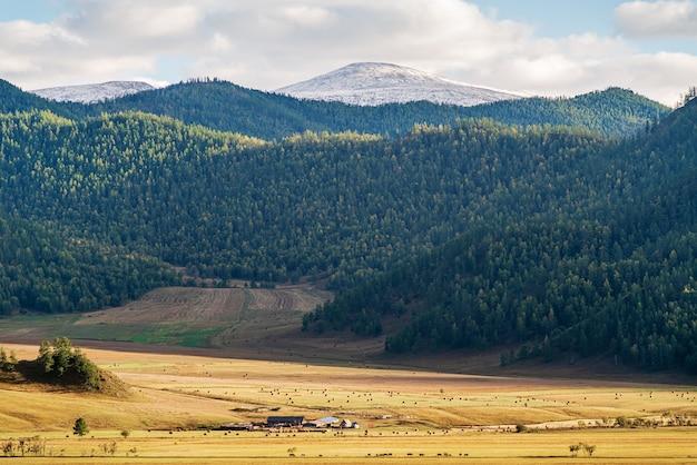 가을의 시골 산 풍경
