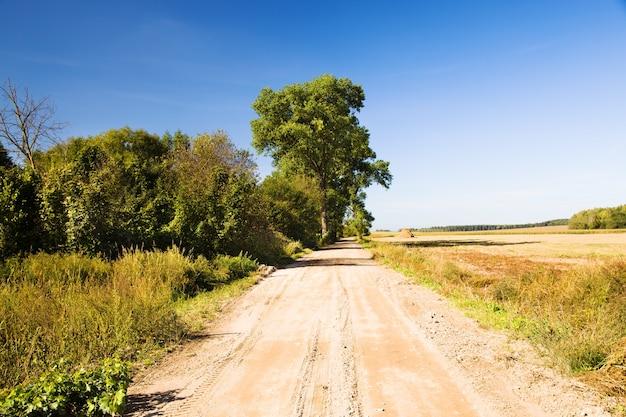 Сельская дорога в летнее время года