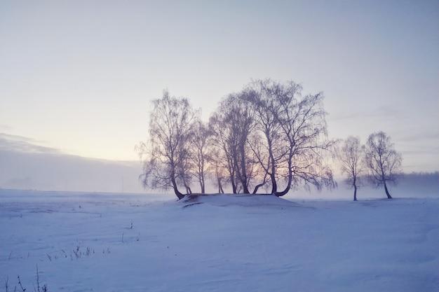 Сельские снежные пейзажи