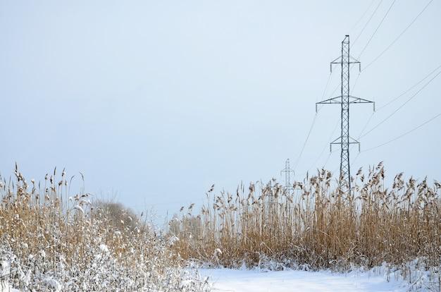 電力線タワーは雪に覆われた湿地帯にあります。黄色のrusの広い分野