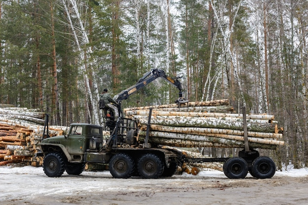 ロシア、カザン-2021年3月1日:白樺の丸太を特殊車両に積み込む。みじん切りの白樺の木。冬の材木の収穫。キャプション:「危険地帯20m。荷物の下に立たないでください」
