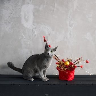 ロシアの青い猫は灰色の壁にクリスマスの装飾の隣に座っています