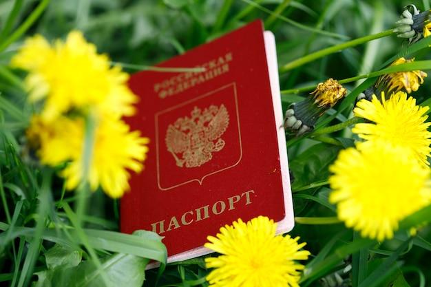 Российский паспорт лежит в траве на природе. фото высокого качества