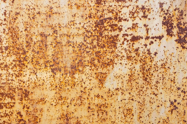 금속판 배경으로 녹 텍스처 프리미엄 사진