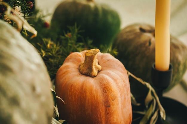 Rustic autumn decor arrangement with pumpkins close up