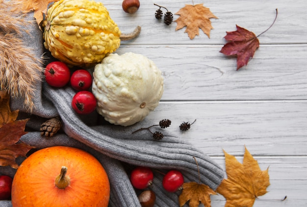 A rustic autumn still life with pumpkins on wooden background