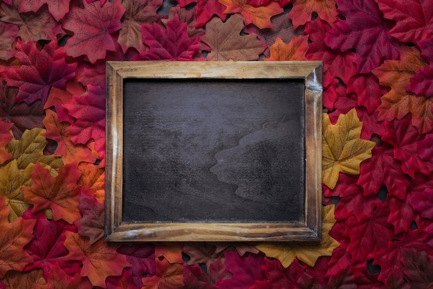 Rustic chalkboard frame set on autumn leaves
