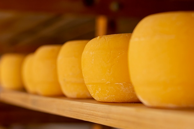 Rustic cheese wheels on a shelf