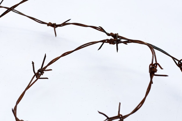 Rusty barb wire isolated on white background