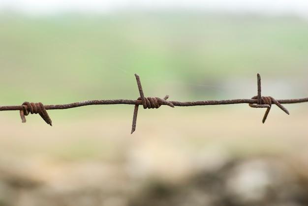さびた有刺鉄線。