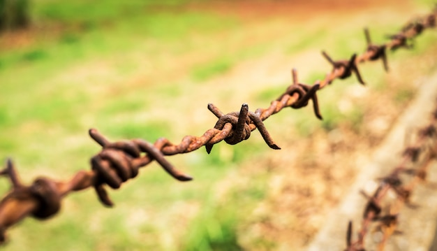 Rusty old barbed wire fence