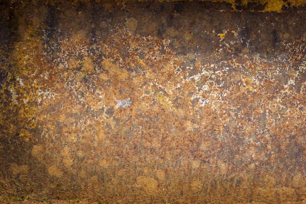 Rusty on old wall background