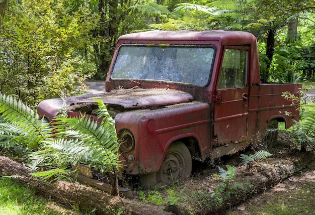 Rusty red car lying abandoned in a forest surrounded by trees