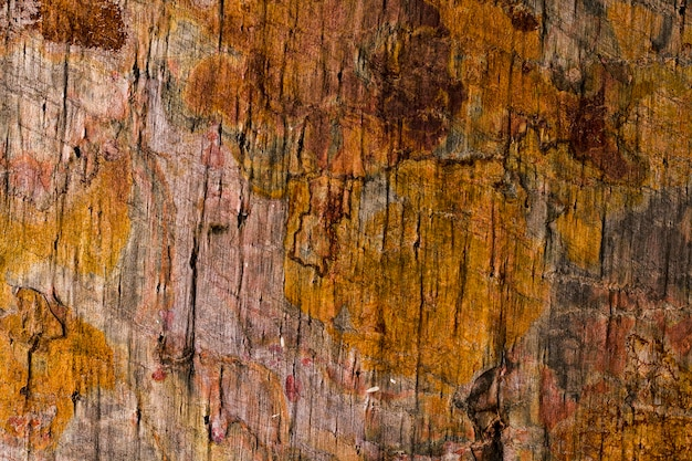 Rusty wooden texture close-up