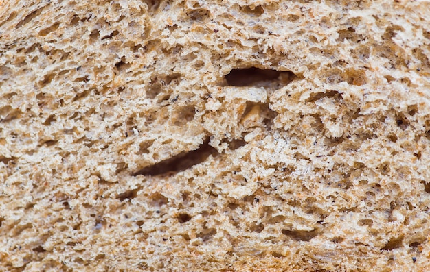 Rye bread crumbs extreme close up