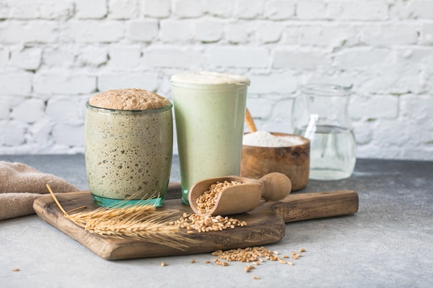 The rye and wheat leaven for bread is active starter sourdough  fermented mixture of water and flour to use as leaven for bread baking the concept of a healthy die
