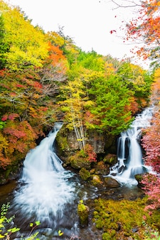 Ryuzu falls in autumn season at nikko, japan.