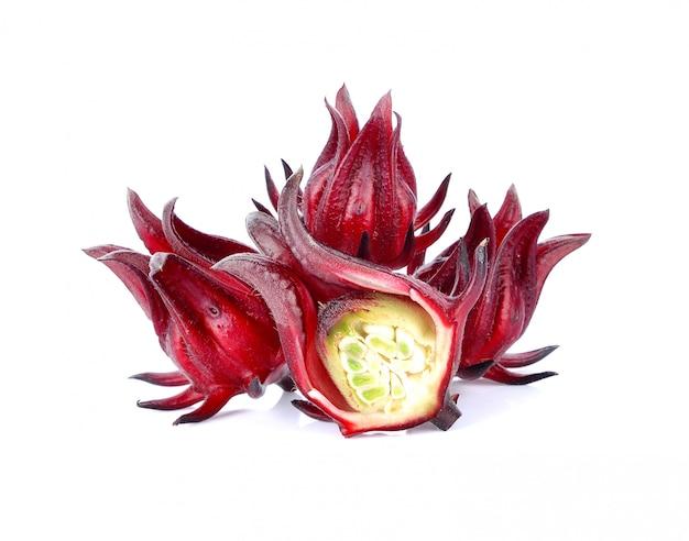 ハイビスカスsabdariffaまたはroselle果物は、白い背景で隔離されています。