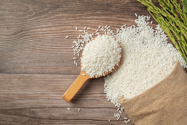Sack of rice with rice on wooden spoon and rice plant