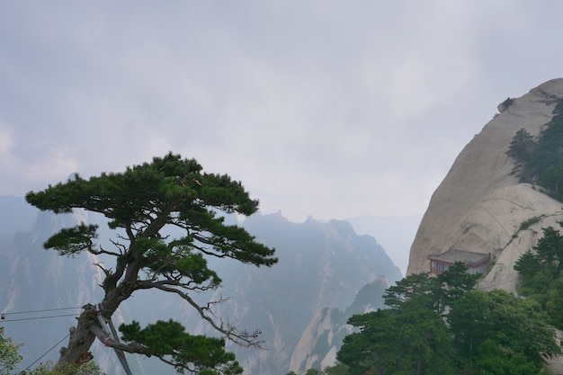 Sacred taoist mountain mount huashan, popular touristic place in china