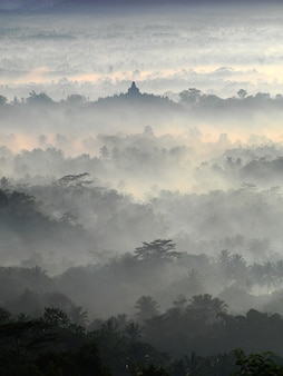 Sacred temple of borobudur in a beautiful foggy sunrise seen from setumbu hill